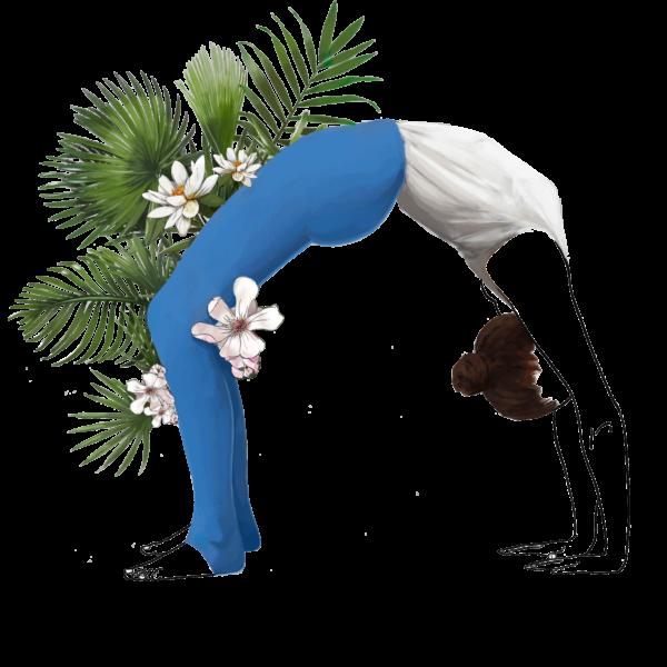 Sagesse & Harmonie - Chakrasana - Hatha Yoga - Ashtanga - Vinyasa
