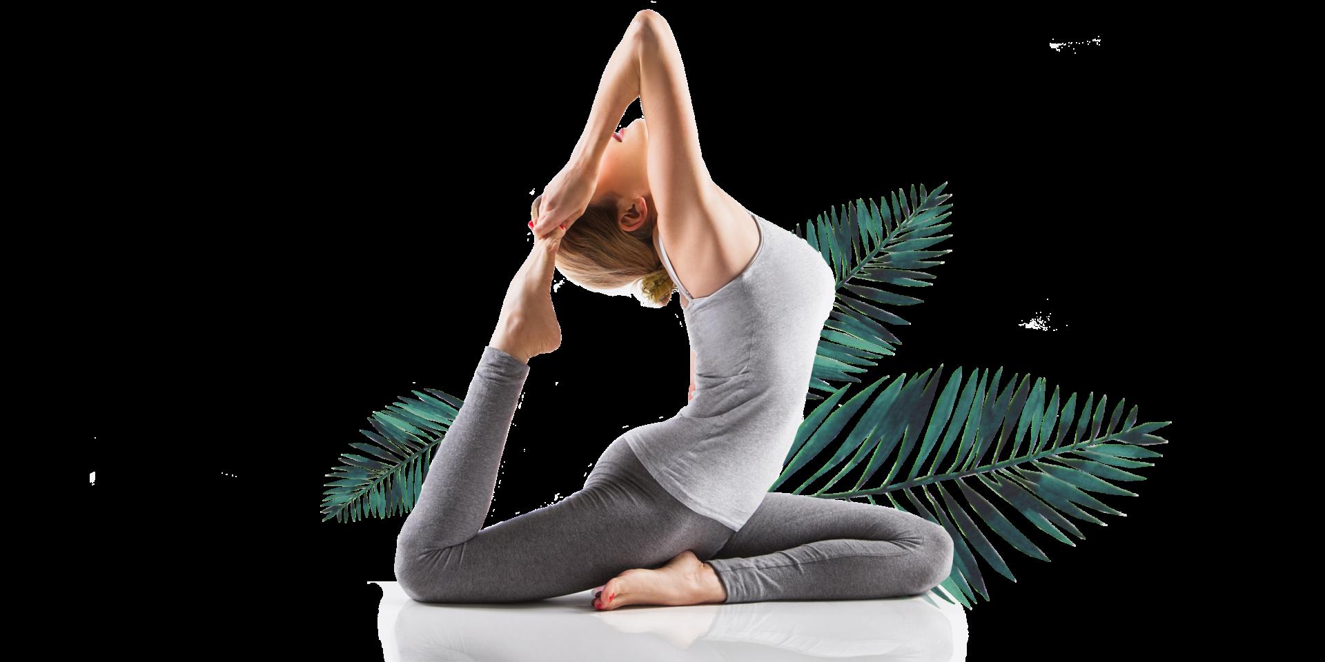Sagesse & Harmonie - Pigeon Pose - Hatha Yoga - Vinyasa - Ashtanga